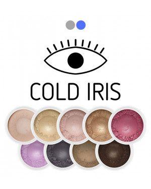 zestaw cieni mineralnych Cold Iris